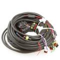 AC STAG QBOX Basic Wiring Loom