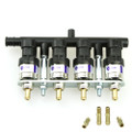 Europegas EG2000 4CYL Injectors Rail