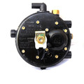 AG 2000 Propane Reducer Regulator Verdampfer Vaporizer LPG Autogas