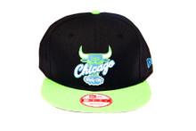 Chicago Bulls Custom Green Blue Logo New Era Snapback Hat