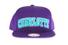 Charlotte Hornets Arch Script Purple Snapback Hat