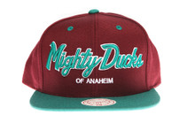 Mighty Ducks 20th Anniversary Script Purple / Turquoise - Mitchell & Ness Snapback Hat