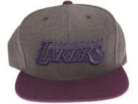 Los Angeles Lakers Logo Mitchell & Ness Dark Tones Grey Snapback Hat