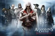 Assassin's Creed Brotherhood Blockmount Wall Hanger Picture