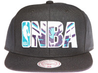 Charlotte Hornets NBA Outline Mitchell & Ness Black Snapback Hat