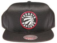 Toronto Raptors Logo Mitchell & Ness NBA Black Mesh Snapback Hat