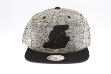 LA Lakers Two-tone Grey Static Marble Logo Mitchell & Ness Snapback Hat