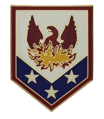 110th Maneuver Enhancement Brigade Combat Service Identification Badge (CSIB)