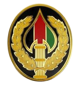 Special Operations Joint Task Force Afghanistan Combat Service Identification Badge (CSIB)