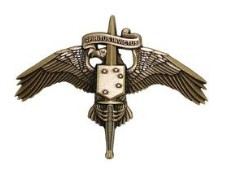 Marine Corps Badge: MARSOC Bronze Marine Corps Forces Special Operations Command