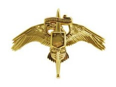 Marine Corps Miniature Badge: MARSOC Marine Corps Forces Special Operations Command