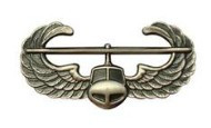 Army Badge: Air Assault - silver oxidized