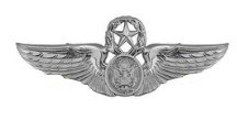 Air Force Badge: Aircrew: Master