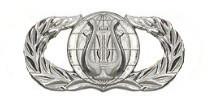 Air Force Badge: Band - regulation size