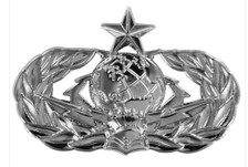 Air Force Badge: Cyberspace Support: Senior - regulation size
