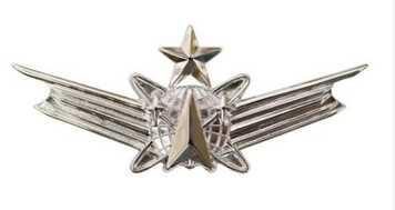Air Force and Army Badge: Space Senior - regulation size