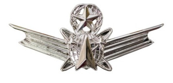 Air Force and Army Badge: Space Master Badge - regulation size