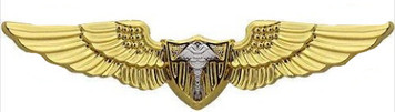 Coast Guard Badge: Flight Surgeon - regulation size