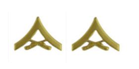 Marine Corps Chevron: Lance Corporal - satin gold- pair