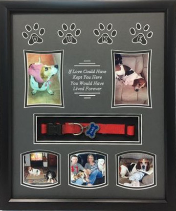 16 x 20 Pet Memorial Shadow Box Frame #5