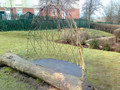 2.0 M Long Willow Arbour Kit