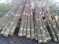 100 x Salix Viminalis 4.0 metre Rods / Whips