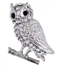 White Crystal Owl Pin