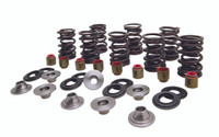 Valve Spring Kit, Lightweight Racing for Polaris® RZR™ XP 1000 2014