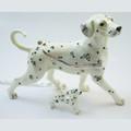 Spotty Dalmatian