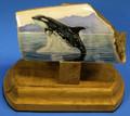 Orca - Scrimshaw by Gary Dorning