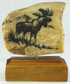 Moose Scrimshaw by Geoff Olson