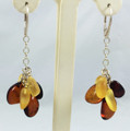 Cluster Amber Earrings