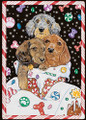Candy Cane Bordered Dachshund Holiday Christmas Card - Single Card of Multi-Pack