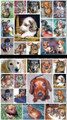 27 Assorted Dachshund Stickers (#197)