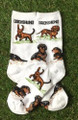 Multi Dachshund Socks w Smooth, Longhair, Wirehair Doxies