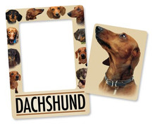 2 in 1 Dachshund Picture Frame Magnet