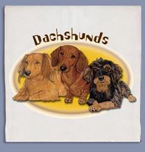 Sunny Dachshunds Dish Towel
