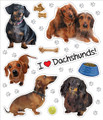 I Love My Dachshunds! Sticker Sheet of 10 Stickers