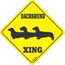 3 Doxies Crossing Xing Yellow Sign with Smooth, Longhair, Wirehair