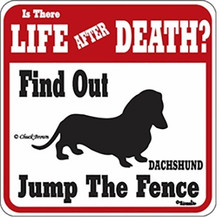 Jump the Fence Life After Death Dachshund Sign