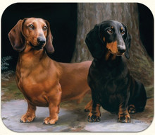 Smooth Red and Black-Tan Dachshund Computer Mousepad