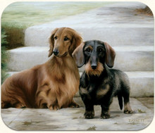 Longhair Red and Wirehair Dachshund Computer Mousepad