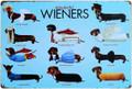 Wonderful Wieners Dachshund Dog Tin Metal Sign