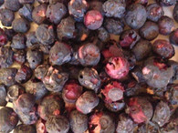 Freeze Dried Blueberry Whole 100g