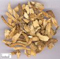 Yuzhu (Fragrant Solomonseal Rhizome)---玉竹(powder100g/bottle)