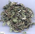 Zelan(Herba Lycopi)---泽兰(powder100g/bottle)