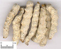 Jiangcan (Stiff Silkworm)---僵蚕
