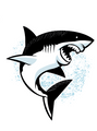 Apple and Mint Big Kid Backpack - Shark