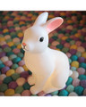 Delight Decor Bunny Light