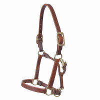 Halter, Leather Hackney Pony (Walsh)